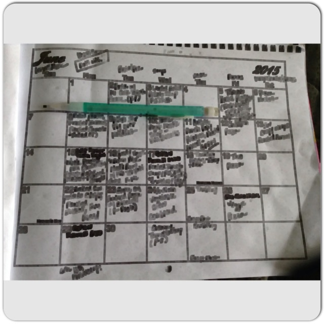 My photocopied calendar.  I write in recipes on here when I have time.  Blurred out for my own privacy.  :)