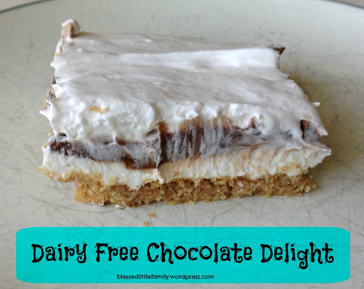 Dairy Free Chocolate Delight